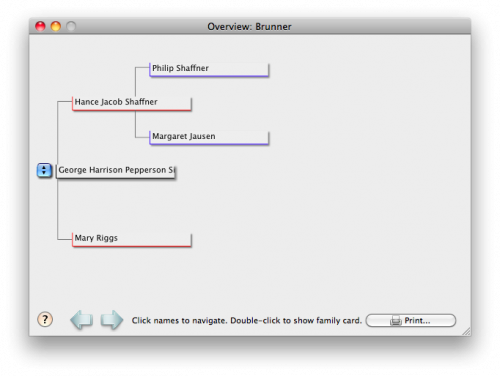 Genealogy on your Mac: Reunion 9