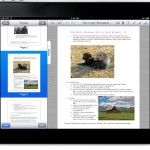 Landscape with Pages View in Sidebar