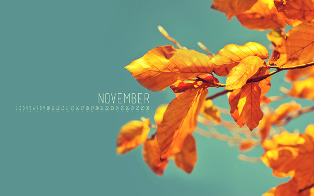 Wallpaper Of The Week: November Goodness