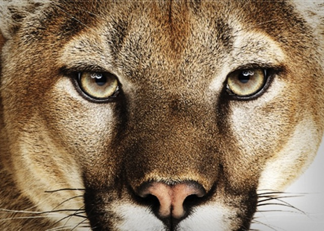 Mountain Lion Takes A Majority Of Mac Web Traffic