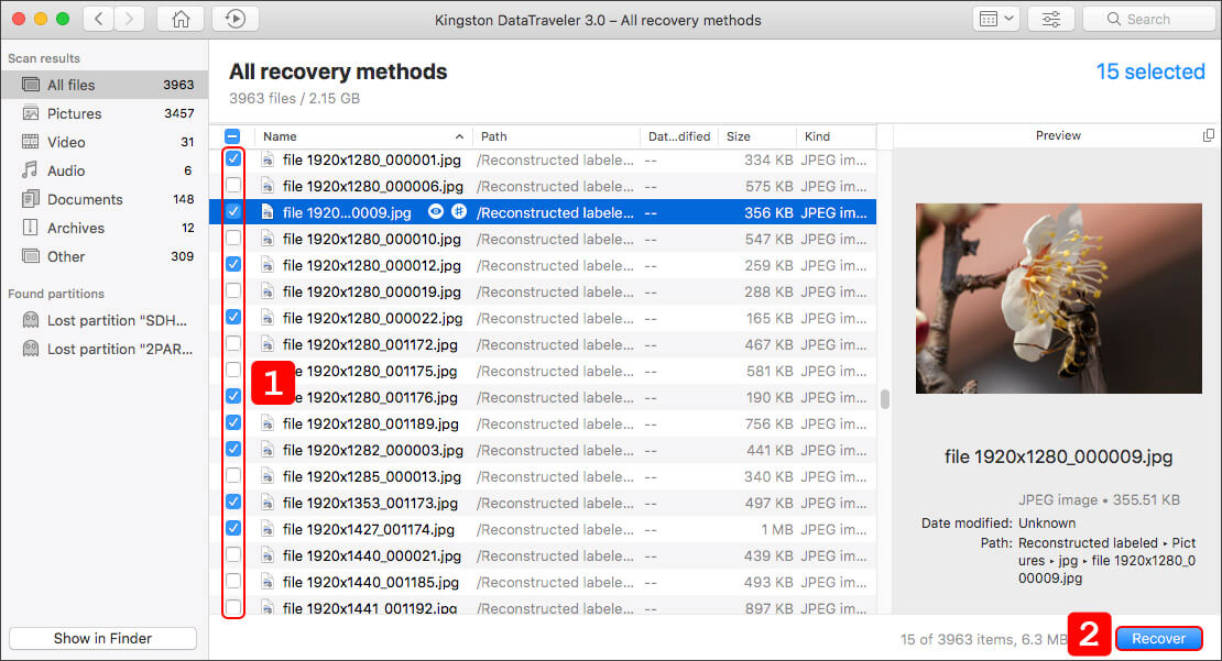 select files for recover